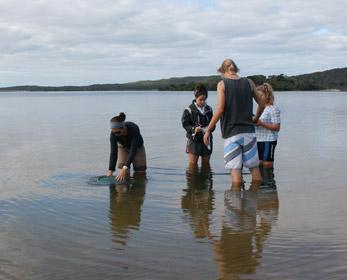 Sampling in an estuary
