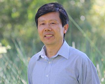 Professor Zhaoyong Zhang