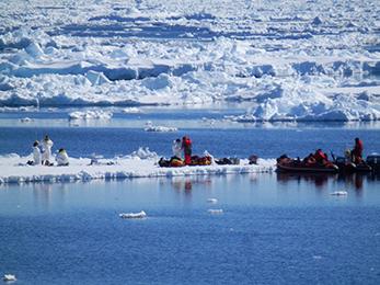 Antarctic Vienna