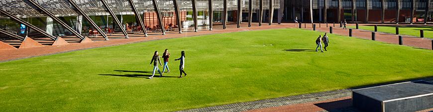 People walking on grass