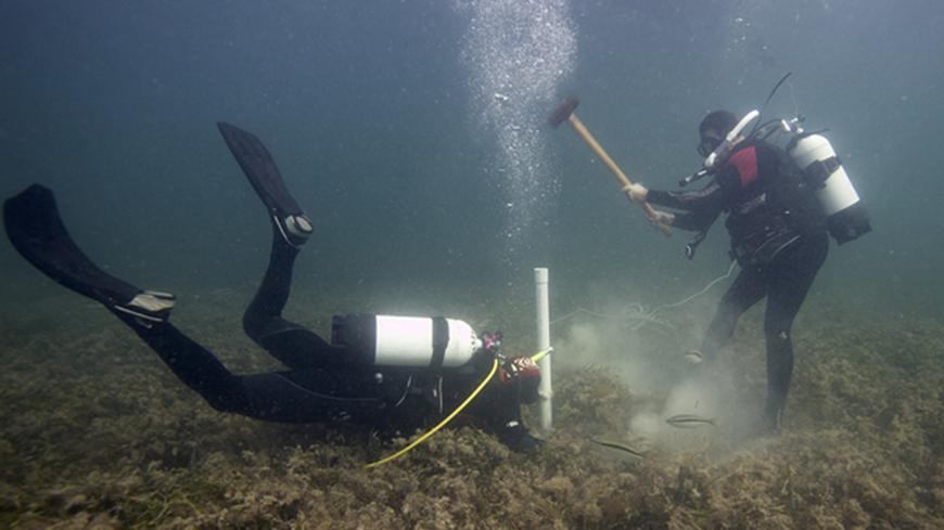 Sampling seagrass cores underwater
