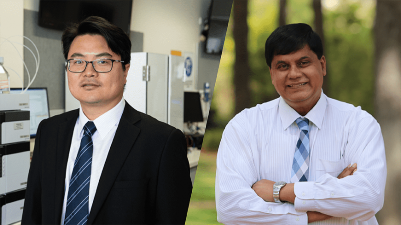 Professor Hongqi Sun and Professor Ralph Martins were named Highly Cited Researchers.