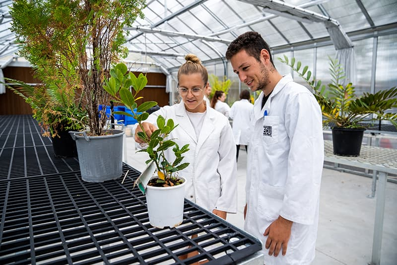 Two students in environmental science lab tending to a plant